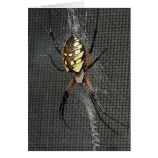 Carte Araignée d'Itsy Bitsy