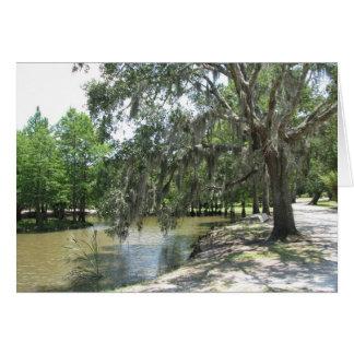 Carte Arbre de bayou, île d'Avery, Louisiane