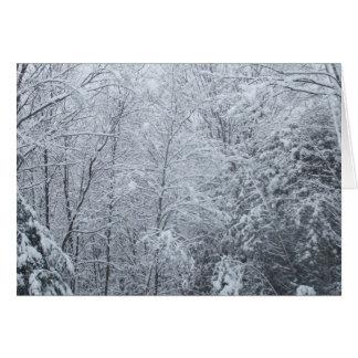 Carte Arbre-Vide congelée