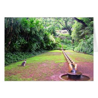 Carte Attente - jardin de Kauai