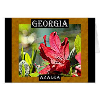 Carte Azalée de la Géorgie