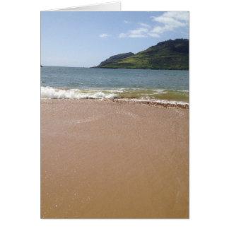 Carte Baie de Kalapaki, Kauai