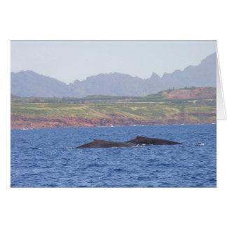 Carte Baleines de bosse hawaïennes