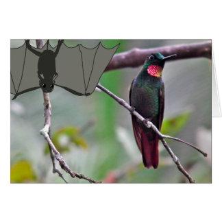 Carte Batte et colibri