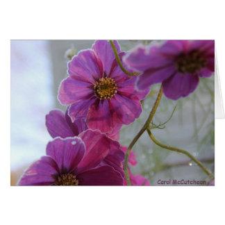 Carte Beauté rose givrée