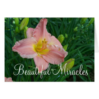 Carte Beaux miracles