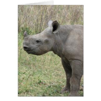 Carte Bébé noir de rhinocéros