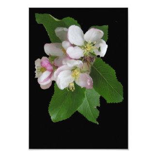 Carte Belles fleurs blanches d'Apple dessus
