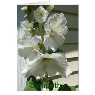 Carte Belles roses trémière blanches, sympathie