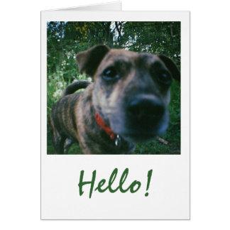 Carte Benny indique bonjour !