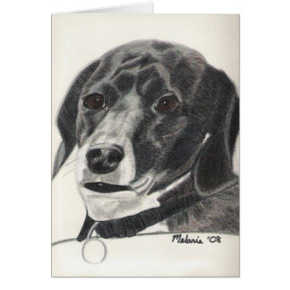 Carte Boglen Terrier - Bruno