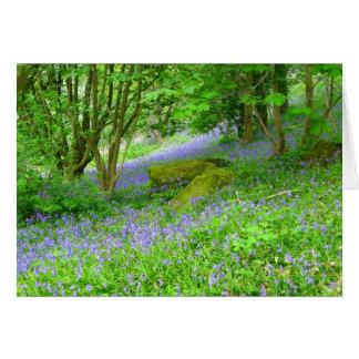 Carte Bois de jacinthe des bois