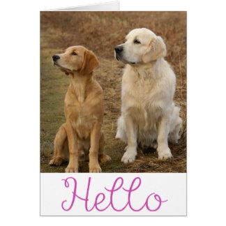 Carte Bonjour blanc de chiot de chien d'arrêt