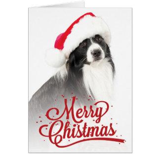 Carte Border collie portant la salutation de Noël de