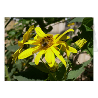 Carte bourdon sur un tournesol