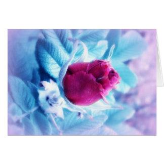 Carte Bourgeon rose