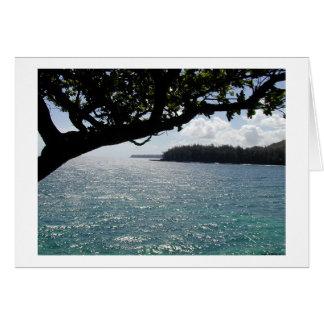 Carte Brise de Kauai