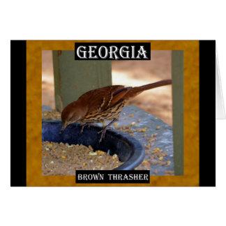 Carte Brown Thrasher (la Géorgie)