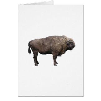 Carte Buffalo