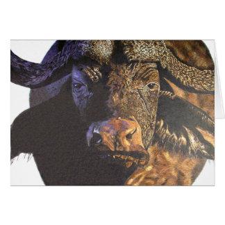 Carte Buffalo de cap