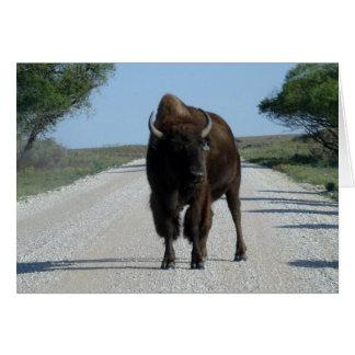 Carte Buffaloed !