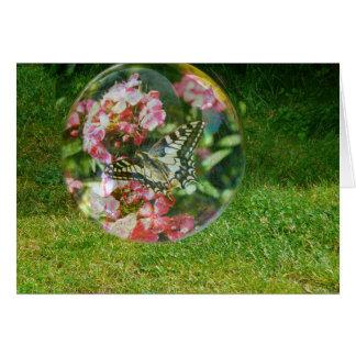 Carte Bulle de papillon