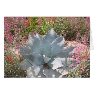Carte Cactus bleu