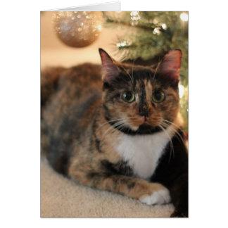 Carte Calicot Kitty sous l'arbre de Noël