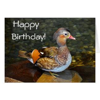 Carte Canard de mandarine - l'anniversaire souhaite la