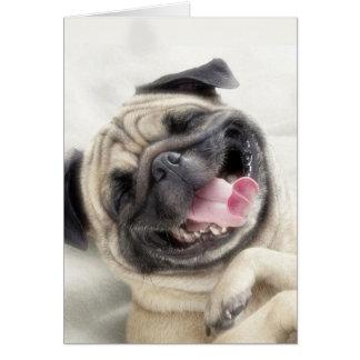 Carte Carlin de sourire. Carlin drôle