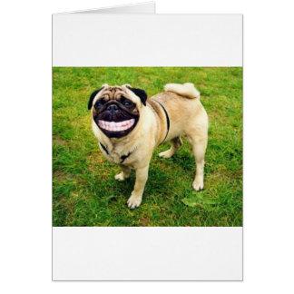 Carte carlin de sourire de chien mignon