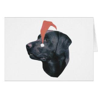 Carte Casquette de labrador retriever Père Noël