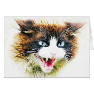 CARTE CAT