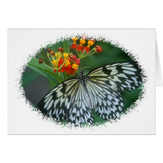 Carte Cerf-volant de papier sur la fleur