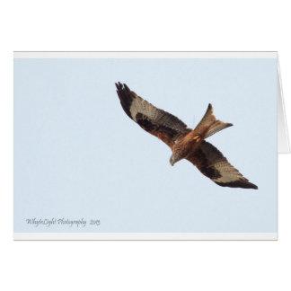 Carte Cerf-volant rouge en ciel