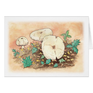 Carte champignons d'automne
