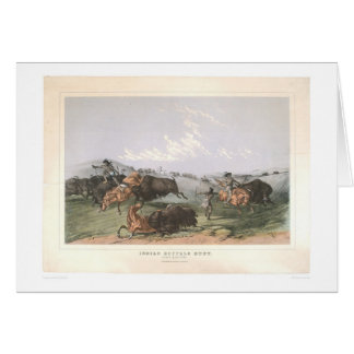 """Carte Chasse de Buffalo indien : """"Quarts étroits"""""""