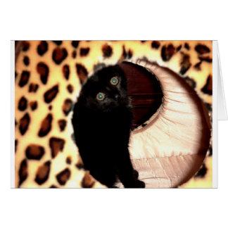 Carte Chat noir dans une gnôle de léopard
