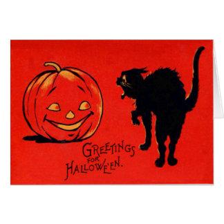Carte Chat noir de citrouille de Jack-o'-lantern