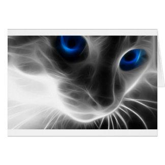 Carte Chat noir et blanc de Kitty observé par bleu