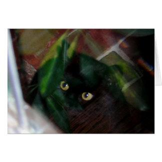 Carte Chat noir regardant par le verre