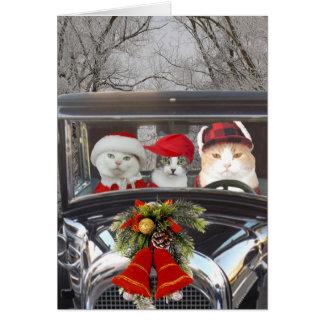 Carte Chats de Noël dans la voiture