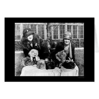 Carte Chats persans et dames américaines 1924