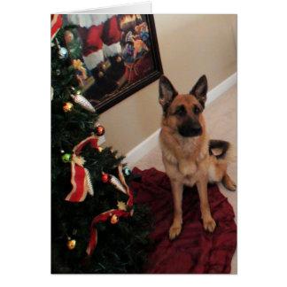 Carte chien de berger allemand de Noël