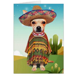 Carte Chien mexicain, chiwawa