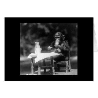 Carte Chimpanzé avec une bouteille et un verre au zoo