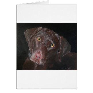 Carte Chocolat Labrador