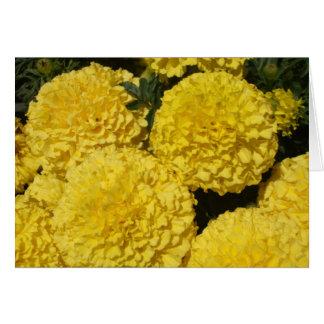 Carte Chrysanthème jaune