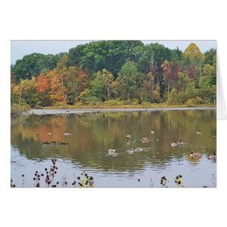 Carte Chute au lac Isaac Ohio