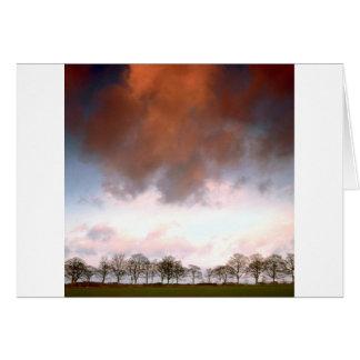 Carte Ciel auburn d'arbres